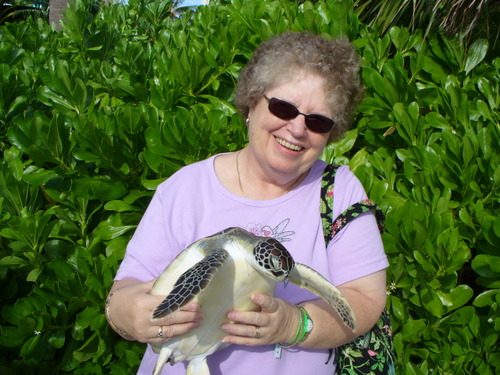 Turtle holding Donna
